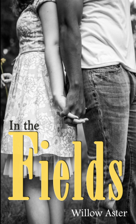 Book Review – In the Fields by Willow Aster