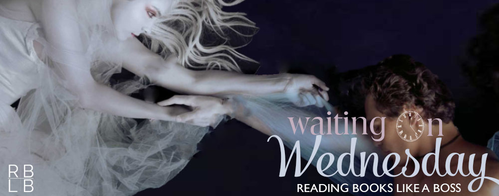 Waiting on Wednesday #4 | Sublime by Christina Lauren