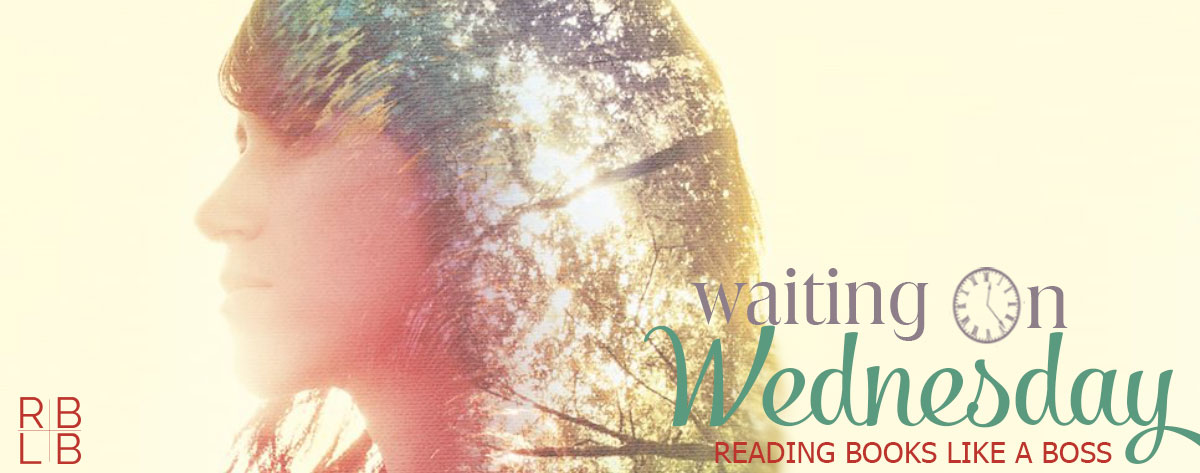 Waiting on Wednesday #11 — This Sky by Autumn Doughton