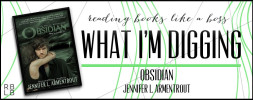 What I'm Digging #14 — Obsidian by Jennifer L. Armentrout