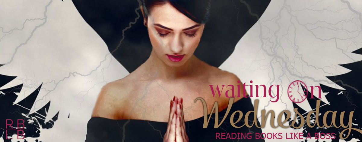 Waiting on Wednesday #24 — Reignite by J.M. Darhower