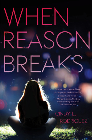 Book Review — When Reason Breaks by Cindy L. Rodriguez