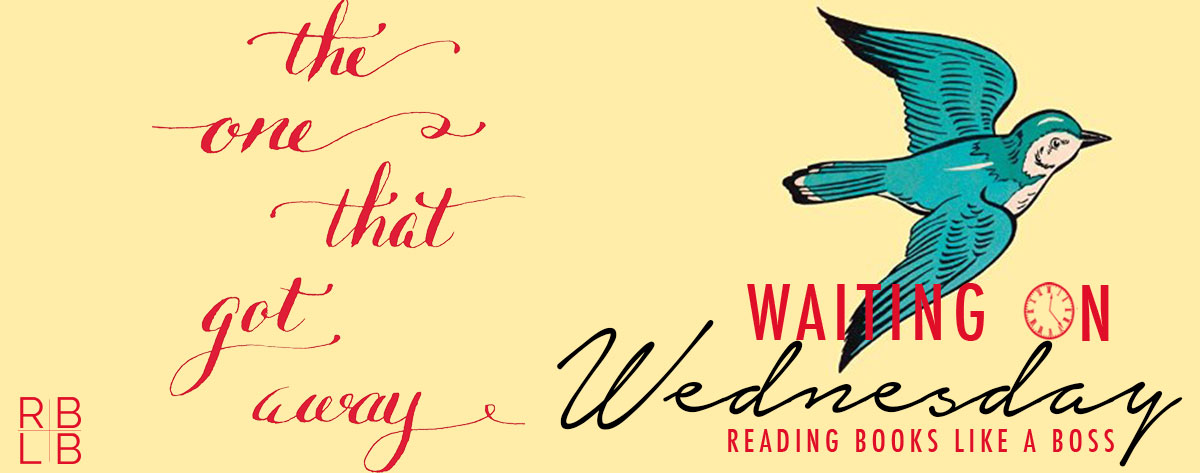 Waiting on Wednesday #36 – The One That Got Away by Bethany Chase