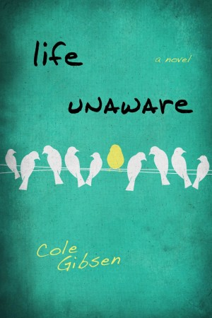 Book Review – Life Unaware by Cole Gibsen