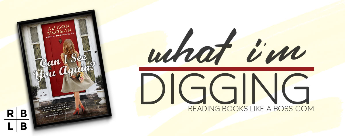 What I'm Digging – Can I See You Again by Allison Morgan