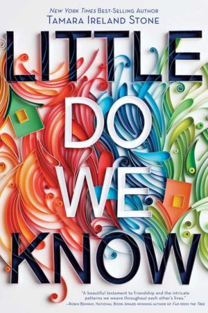 Book Review – Little Do We Know by Tamara Ireland Stone